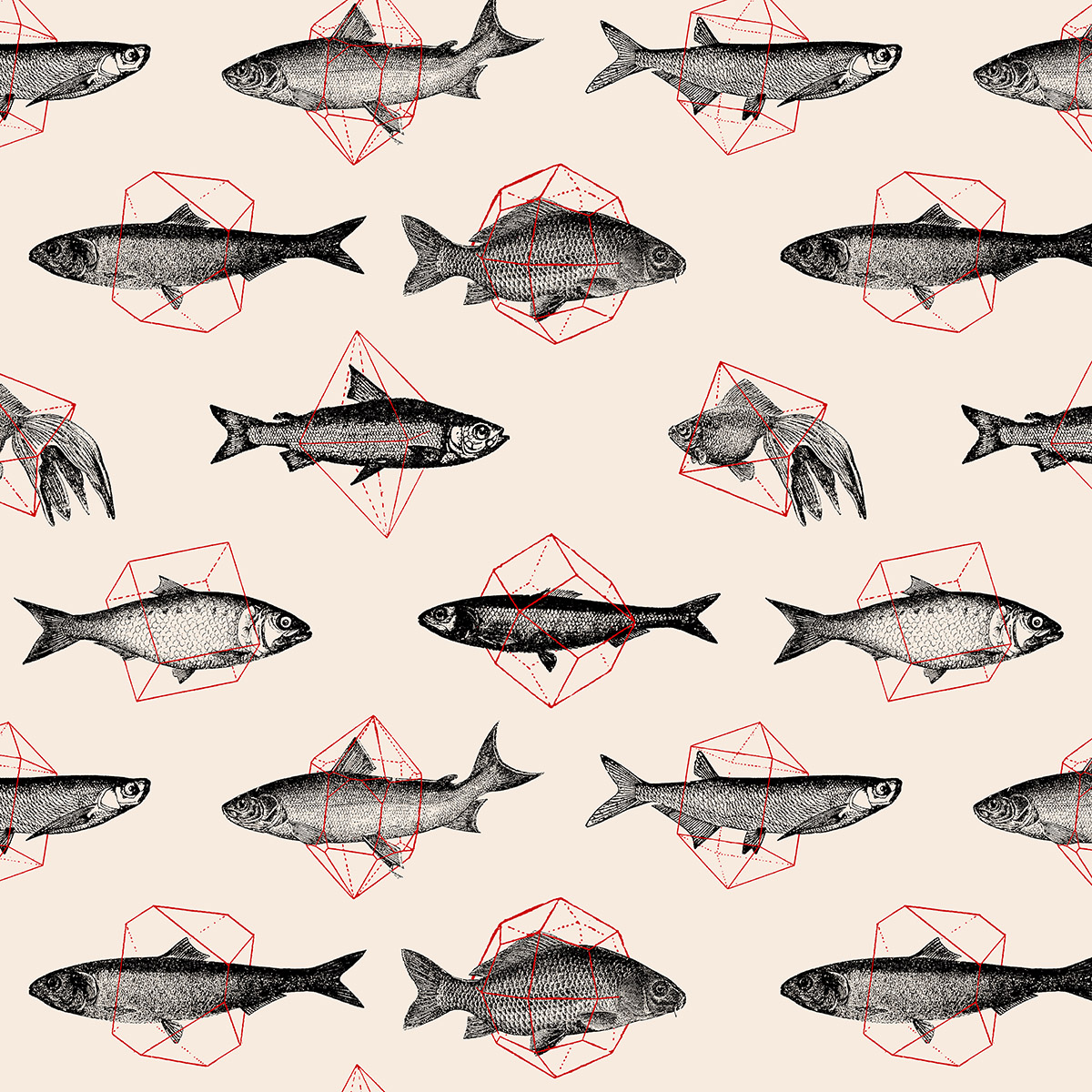 <dive><h1>Fishes In Geometrics</h1>Pattern</dive>